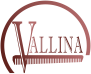 Academia Vallina Logo